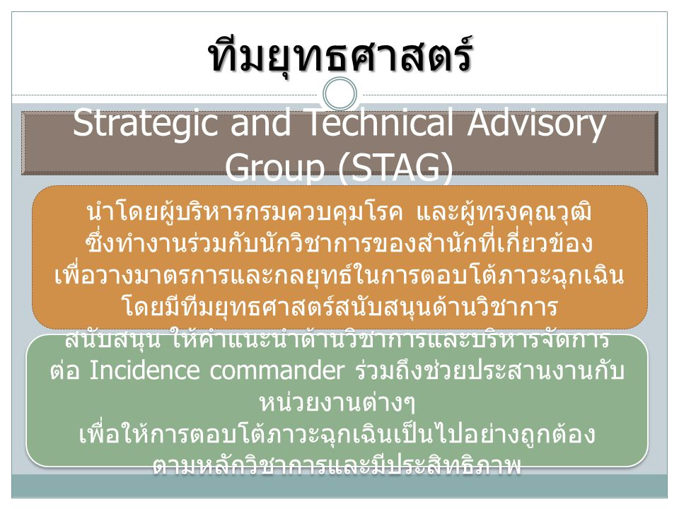 ทีมยุทธศาสตร์ Strategic and Technical Advisory Group (STAG)