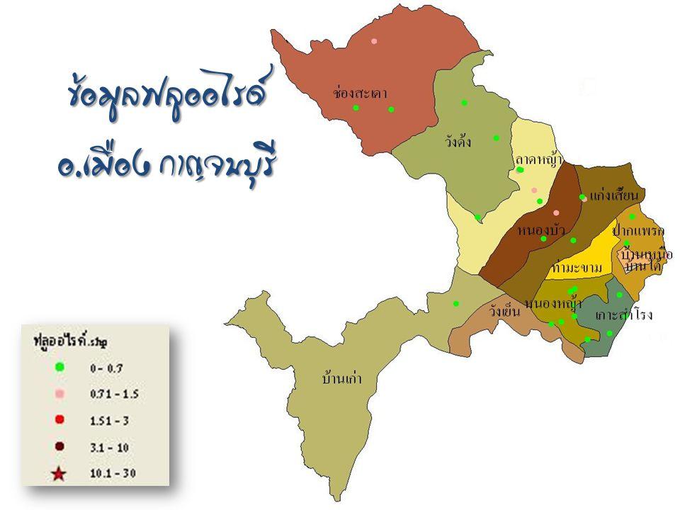 ข้อมูลฟลูออไรด์ อ.เมือง กาญจนบุรี