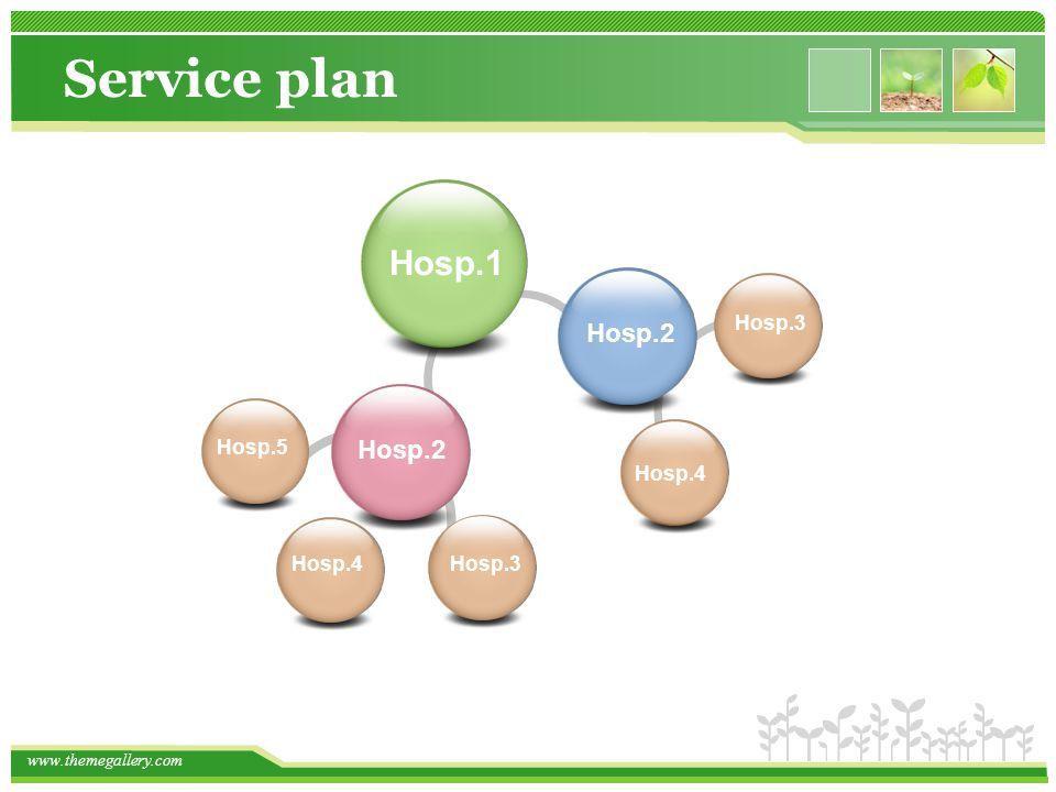 Service plan Hosp.1 Hosp.2 Hosp.3 Hosp.5 Hosp.2 Hosp.4 Hosp.4 Hosp.3