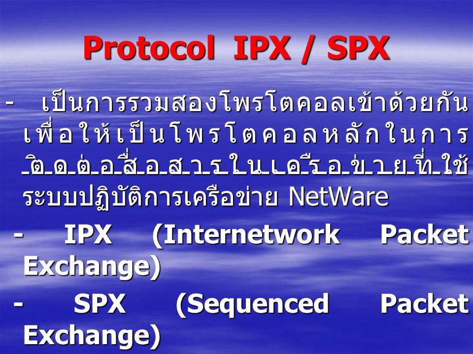 Protocol IPX / SPX - เป็นการรวมสองโพรโตคอลเข้าด้วยกันเพื่อให้เป็นโพรโตคอลหลักในการติดต่อสื่อสารในเครือข่ายที่ใช้ระบบปฏิบัติการเครือข่าย NetWare.