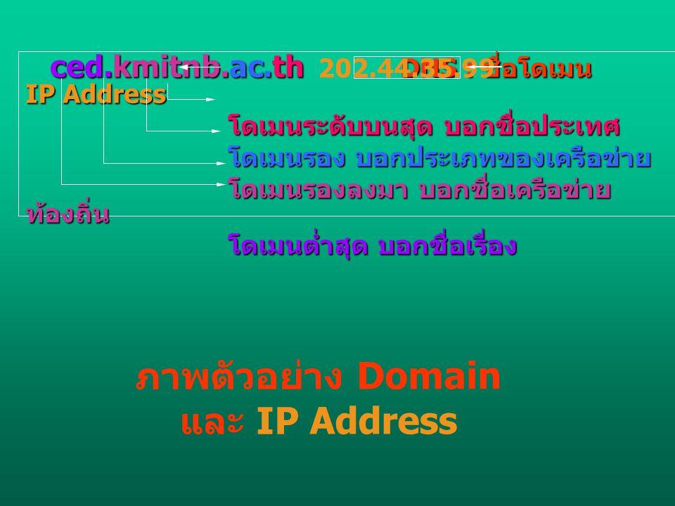 ภาพตัวอย่าง Domain และ IP Address
