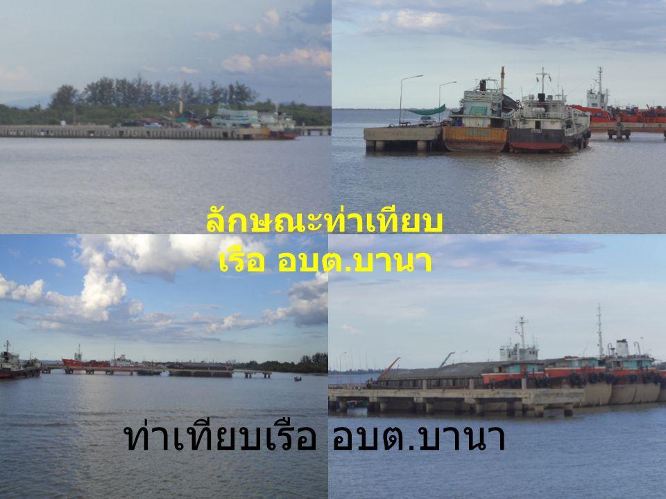 ลักษณะท่าเทียบเรือ อบต.บานา