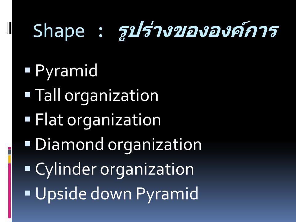 Shape : รูปร่างขององค์การ