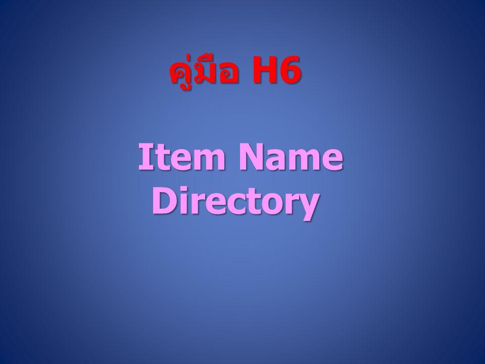 คู่มือ H6 Item Name Directory