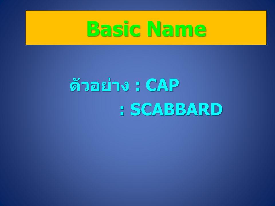 Basic Name ตัวอย่าง : CAP : SCABBARD