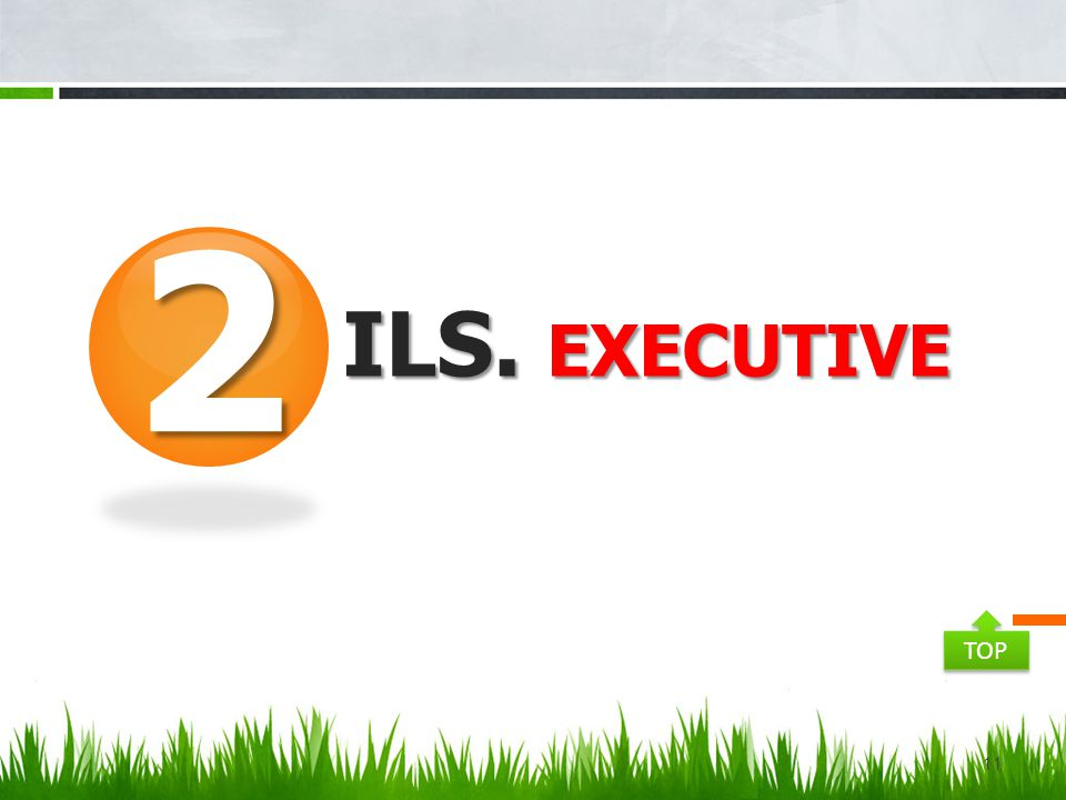 2 ILS. Executive TOP