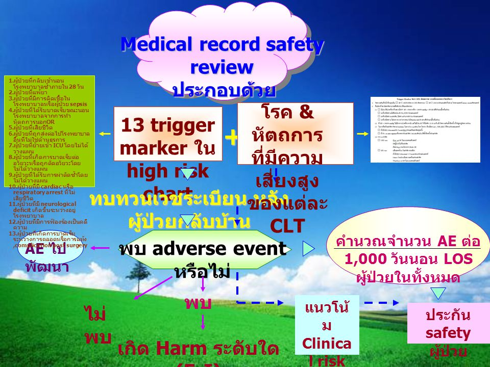+ Medical record safety review ประกอบด้วย