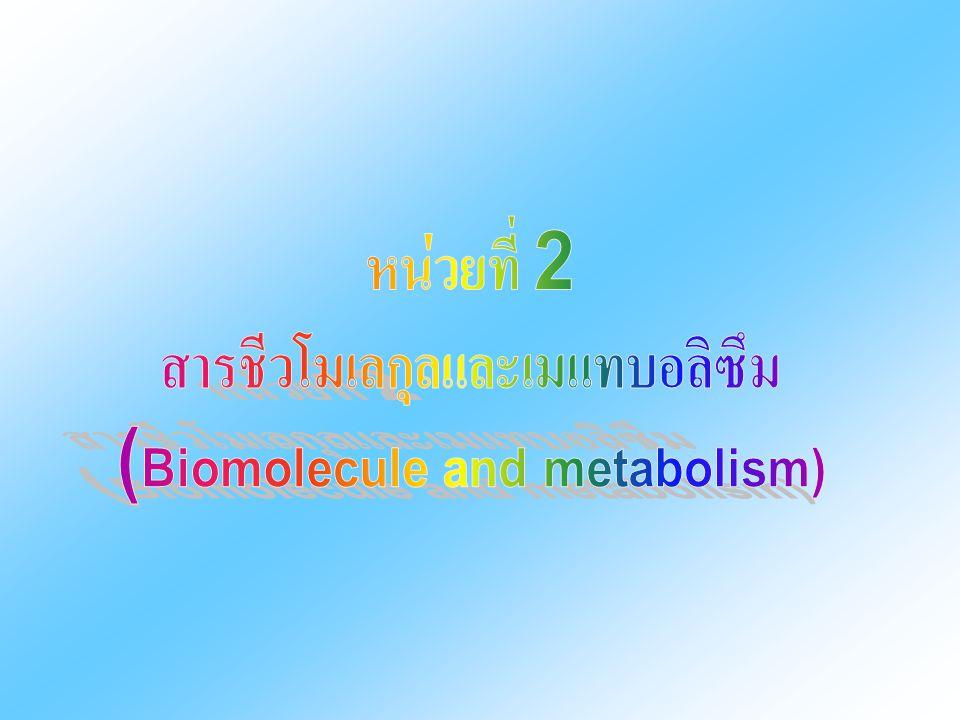 สารชีวโมเลกุลและเมแทบอลิซึม (Biomolecule and metabolism)