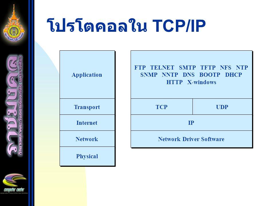 FTP TELNET SMTP TFTP NFS NTP SNMP NNTP DNS BOOTP DHCP HTTP X-windows