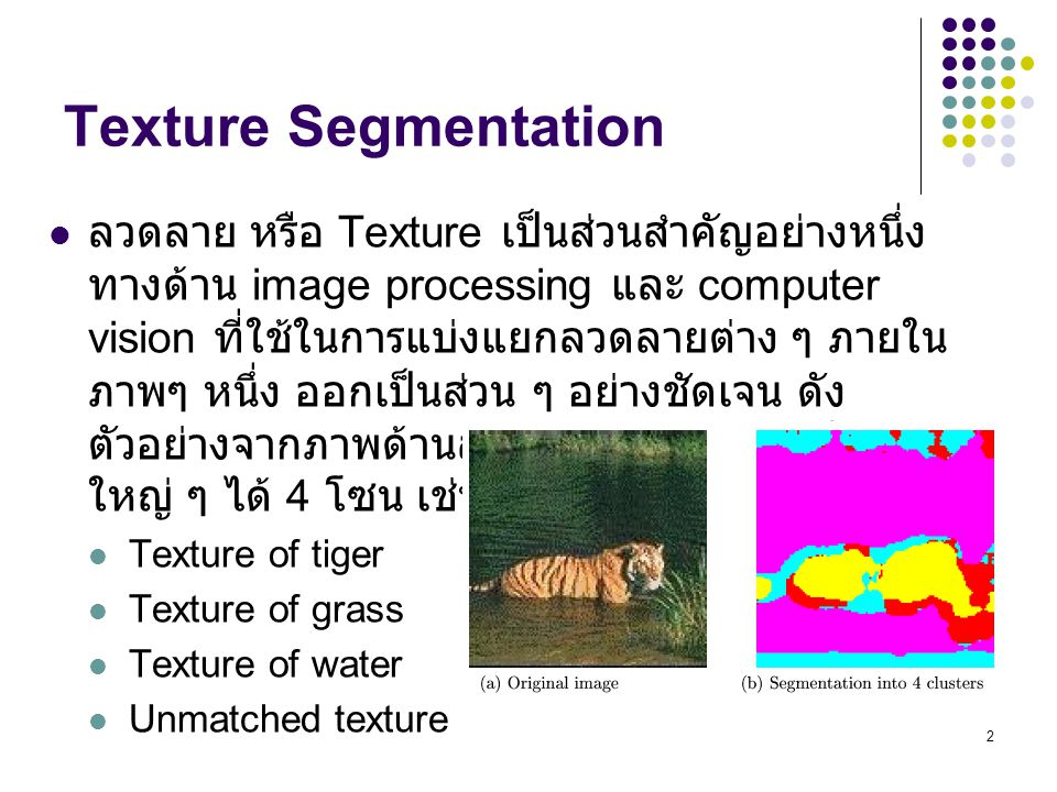 Texture Segmentation