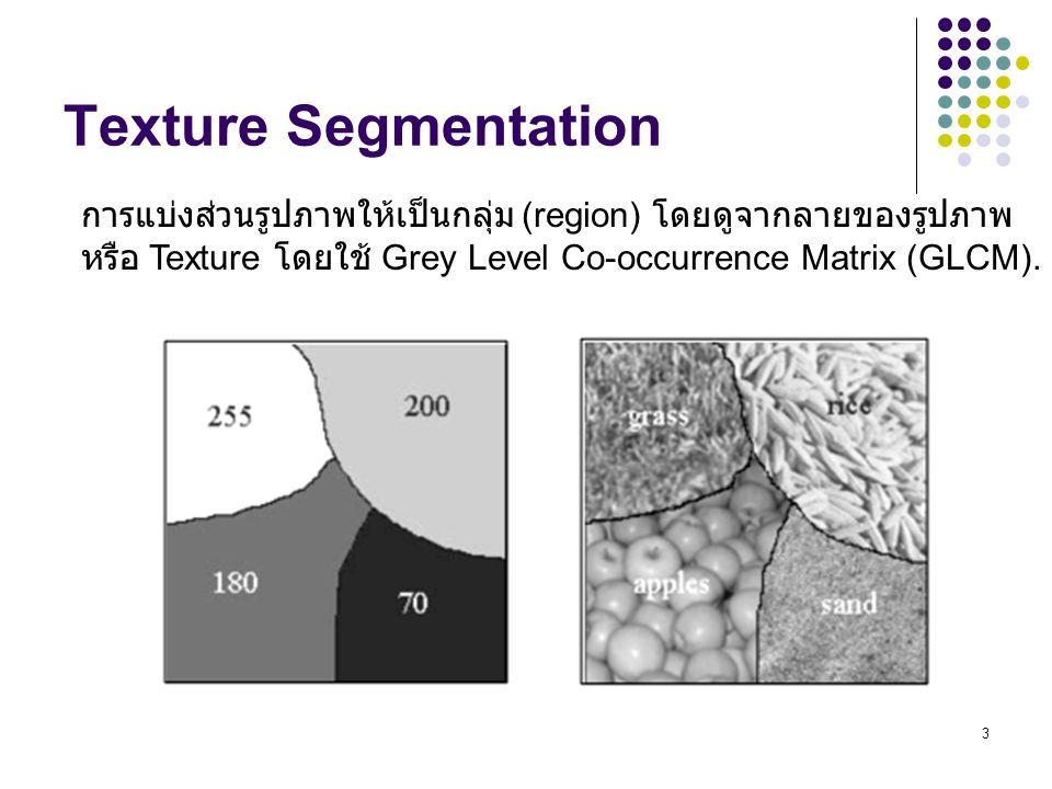 Texture Segmentation การแบ่งส่วนรูปภาพให้เป็นกลุ่ม (region) โดยดูจากลายของรูปภาพ.