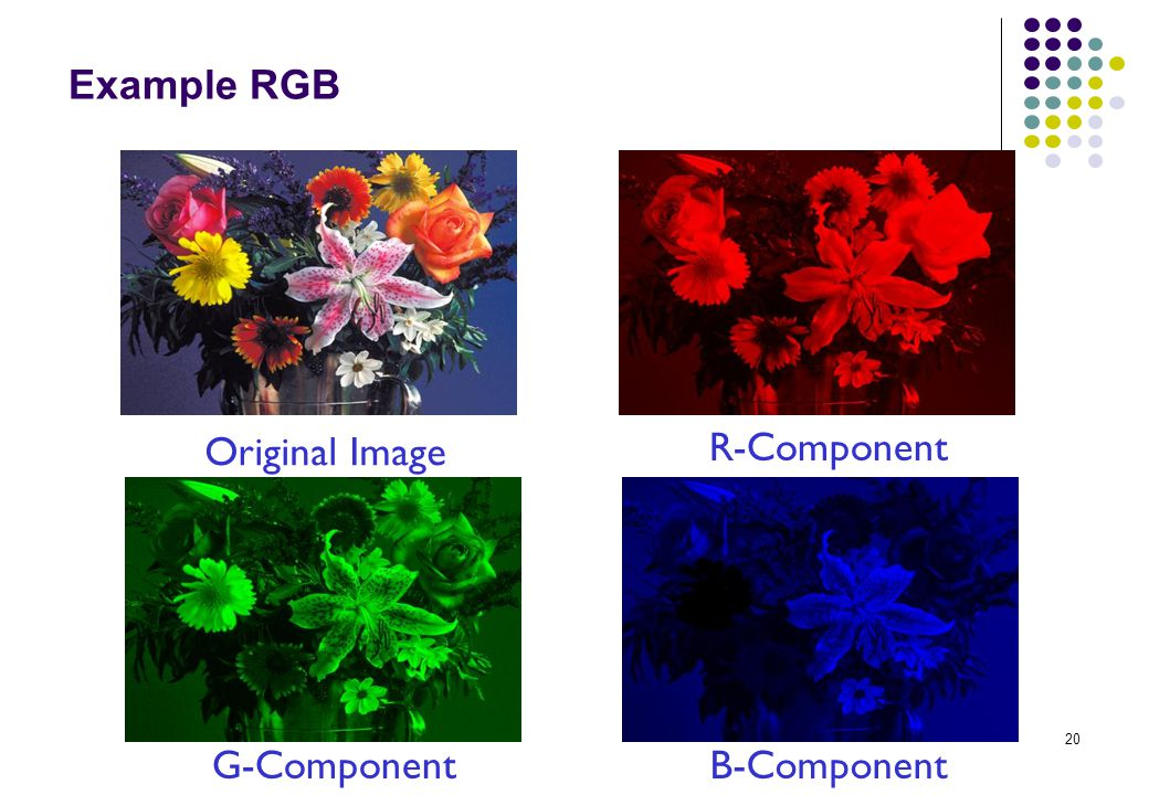 Example RGB Original Image R-Component G-Component B-Component