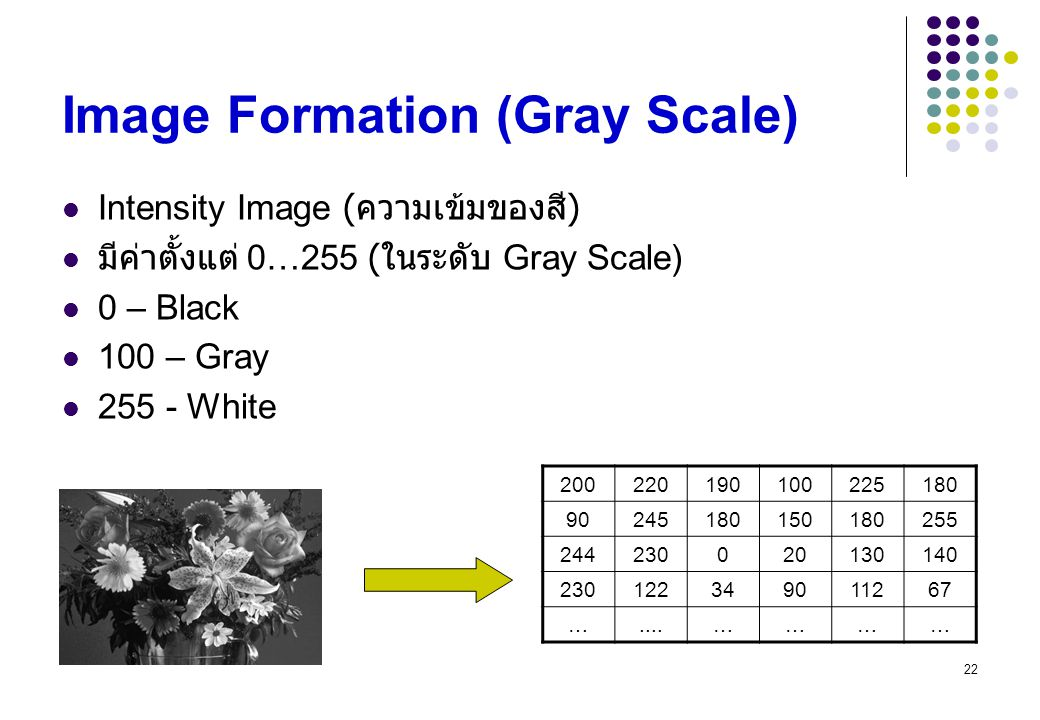 Image Formation (Gray Scale)