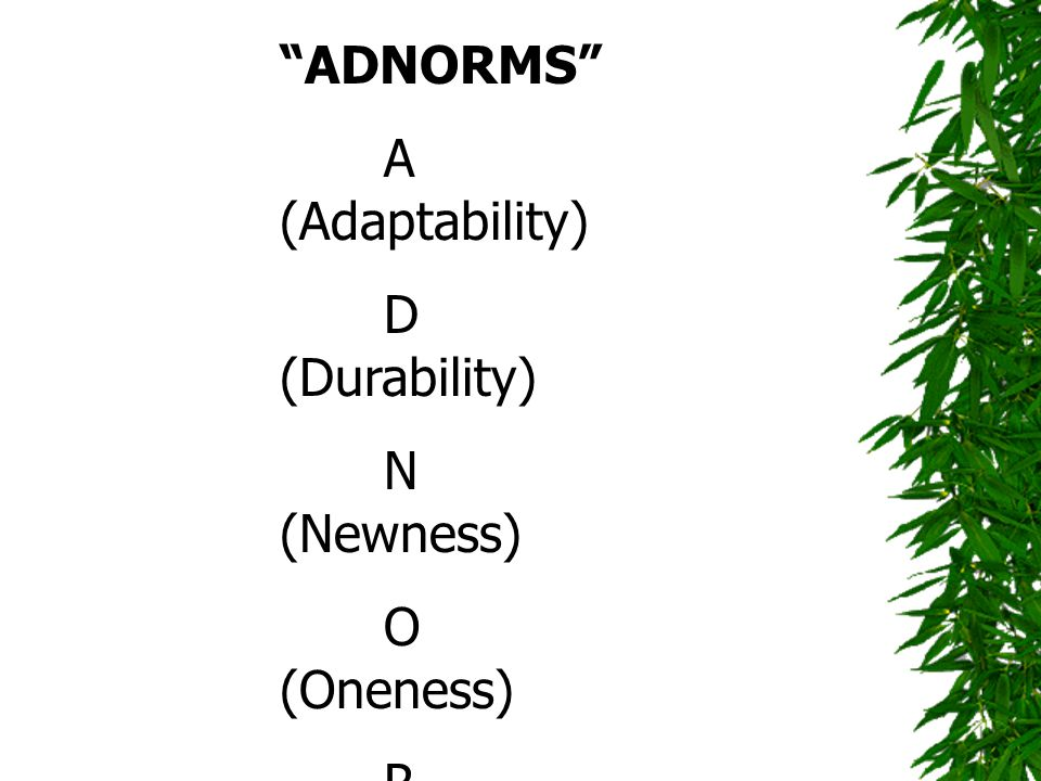 ADNORMS A (Adaptability) D (Durability) N (Newness) O (Oneness) R (Relevance) M (Memo ability)