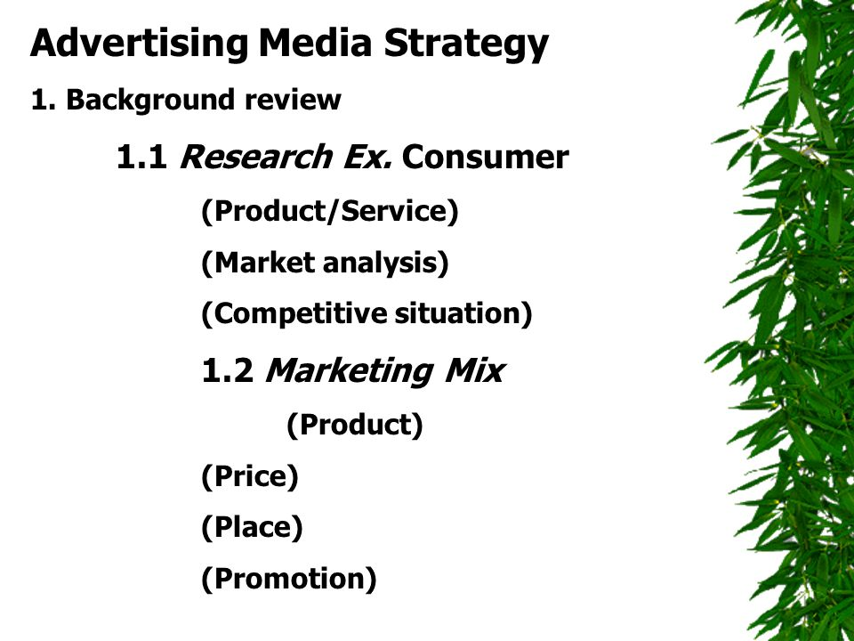 Advertising Media Strategy