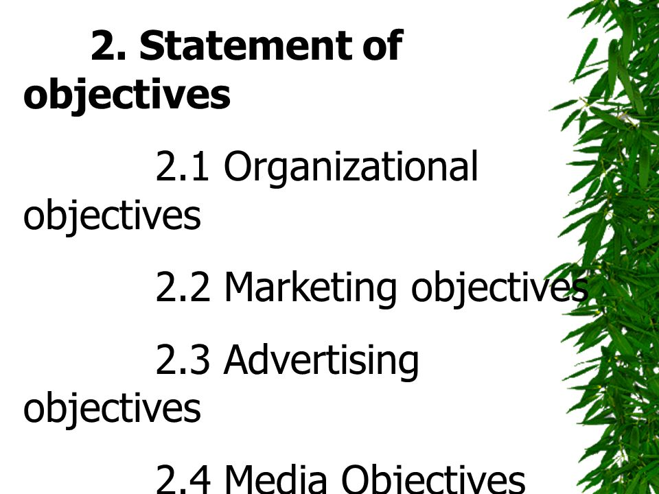 2. Statement of objectives