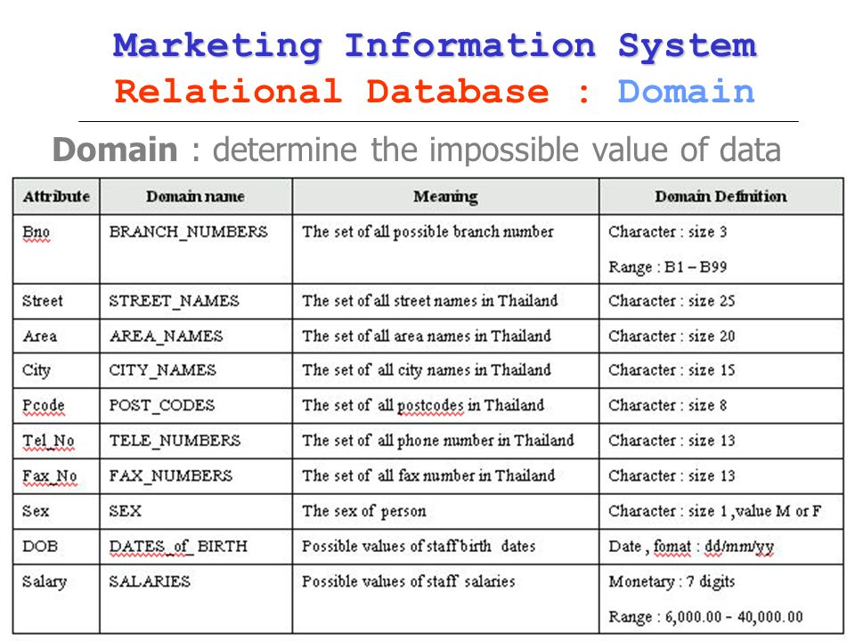 Marketing Information System Relational Database : Domain