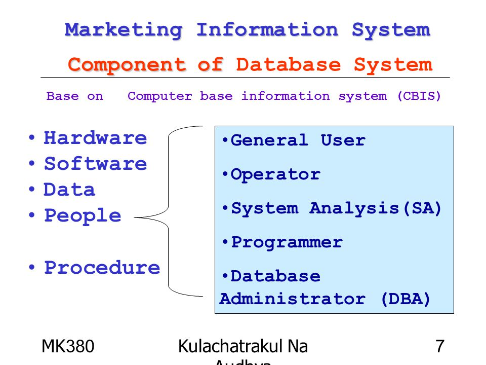 Marketing Information System Component of Database System
