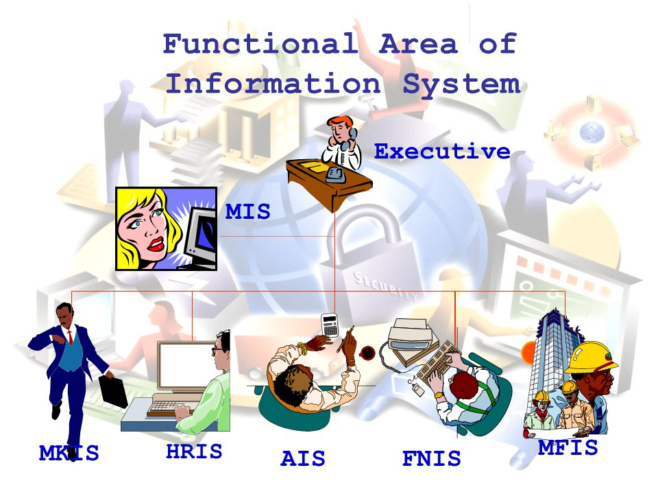 Functional Area of Information System