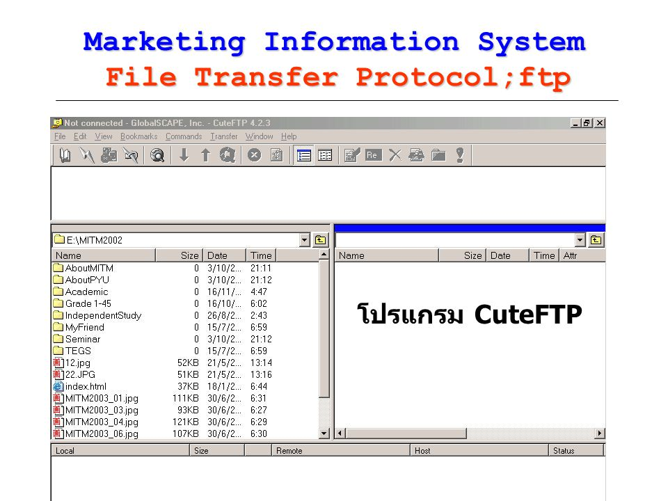 Marketing Information System File Transfer Protocol;ftp
