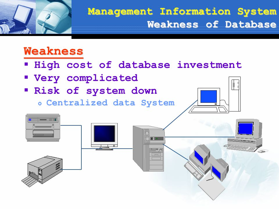 Management Information System Weakness of Database