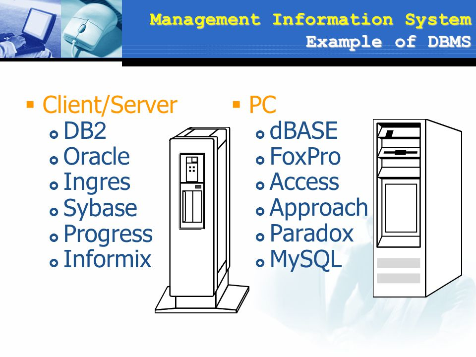 Management Information System Example of DBMS