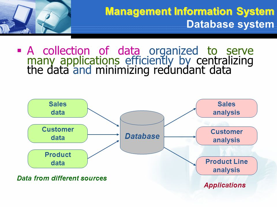 Management Information System Database system