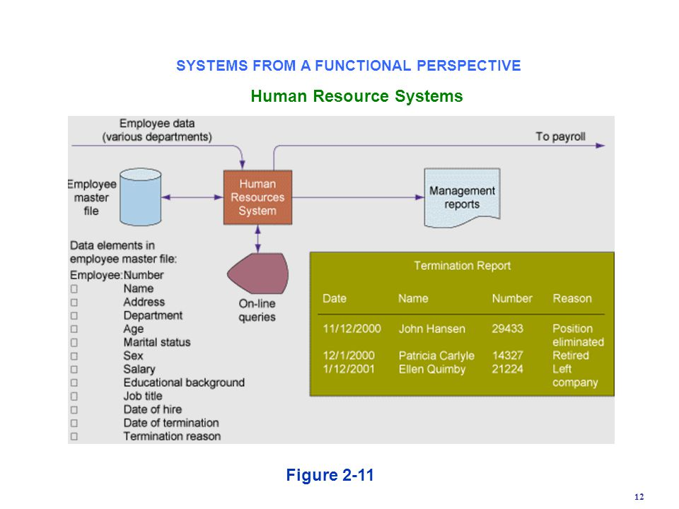 SYSTEMS FROM A FUNCTIONAL PERSPECTIVE Human Resource Systems
