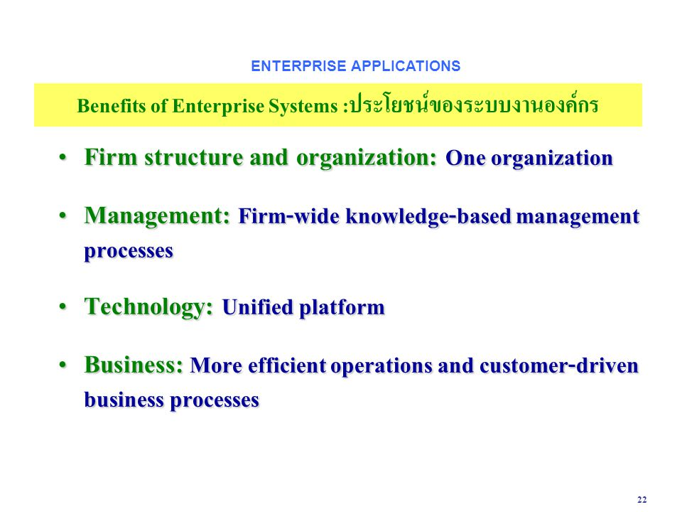 Firm structure and organization: One organization