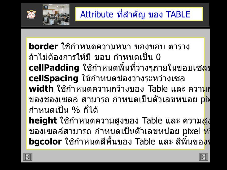 Attribute ที่สำคัญ ของ TABLE