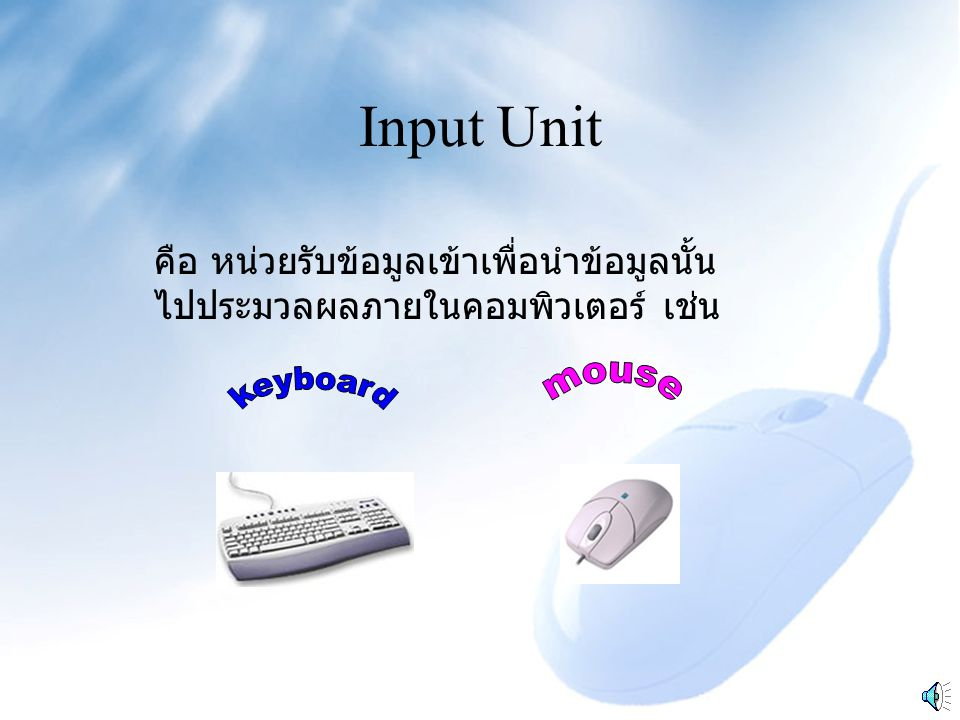 Input Unit mouse keyboard