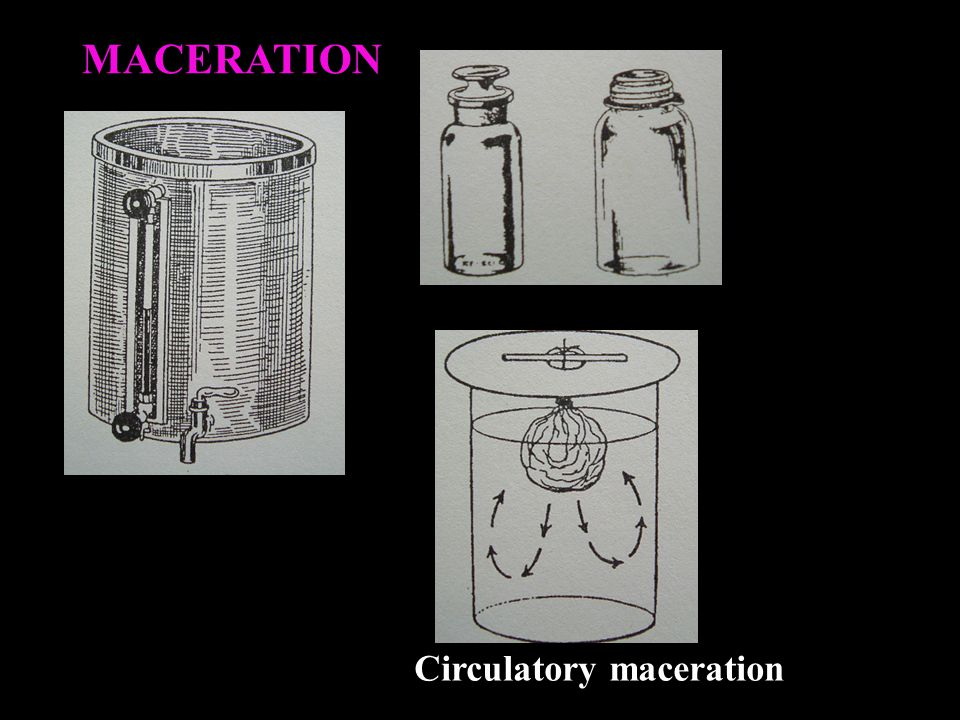 MACERATION Circulatory maceration