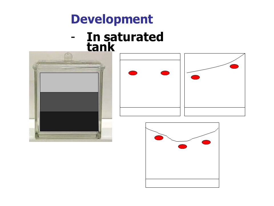 Development In saturated tank