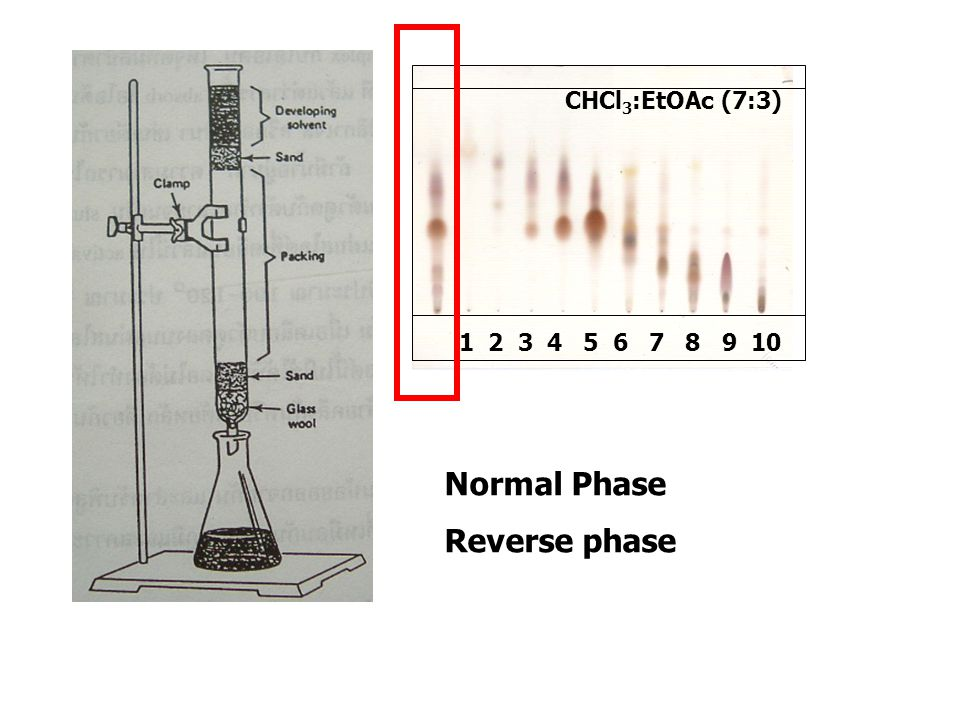 CHCl3:EtOAc (7:3) Normal Phase Reverse phase