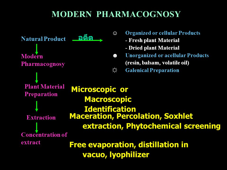 MODERN PHARMACOGNOSY อดีต Microscopic or Macroscopic Identification