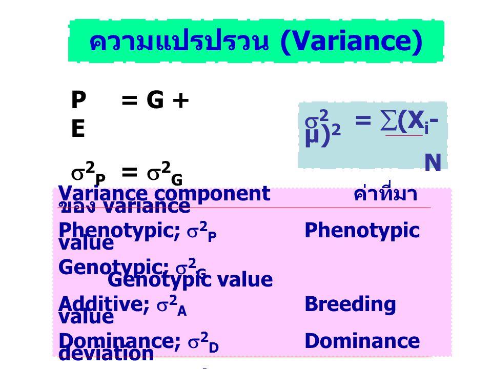 ความแปรปรวน (Variance)