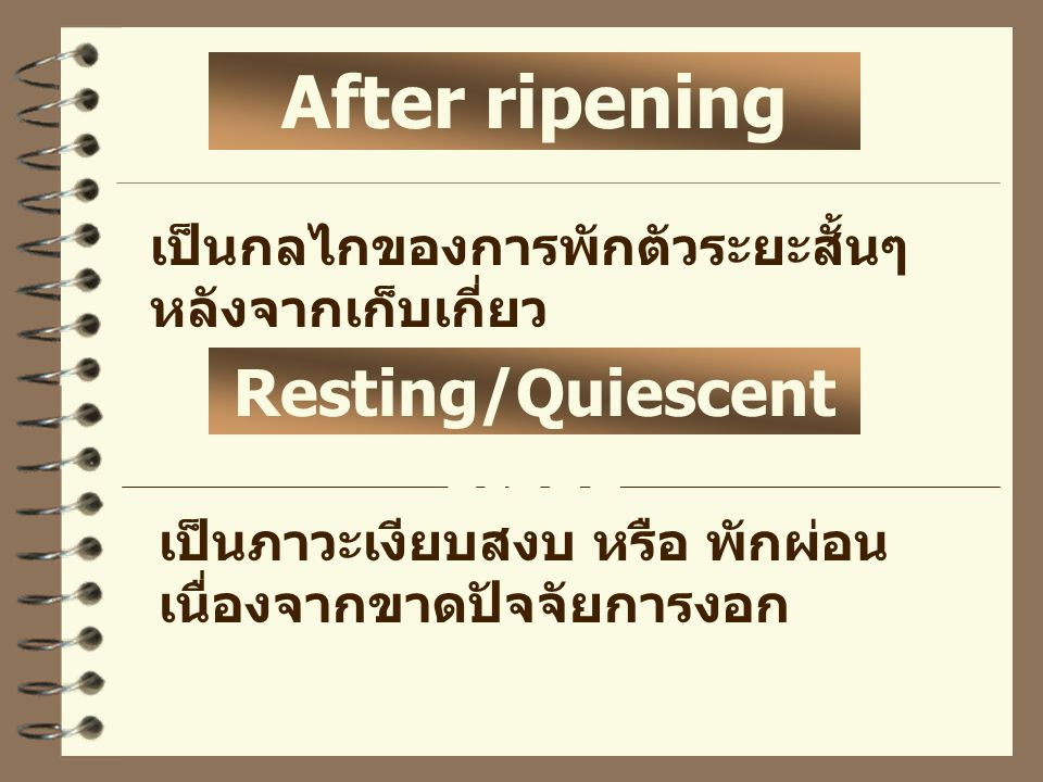 Resting/Quiescent stage