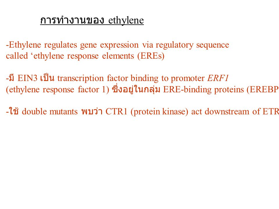 การทำงานของ ethylene -Ethylene regulates gene expression via regulatory sequence. called 'ethylene response elements (EREs)
