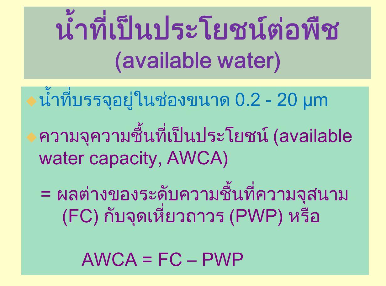 น้ำที่เป็นประโยชน์ต่อพืช (available water)
