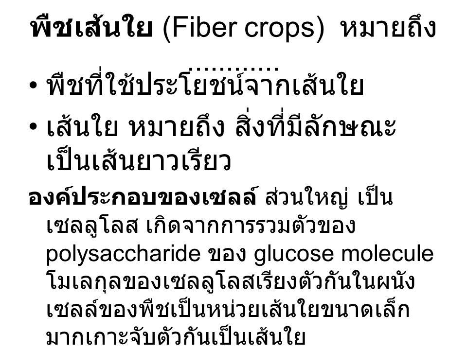 พืชเส้นใย (Fiber crops) หมายถึง............