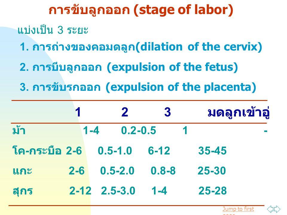 การขับลูกออก (stage of labor)