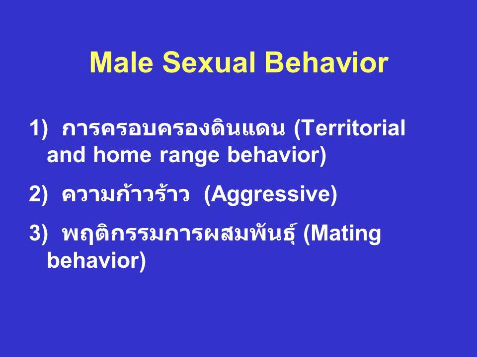 Male Sexual Behavior 1) การครอบครองดินแดน (Territorial and home range behavior) 2) ความก้าวร้าว (Aggressive)