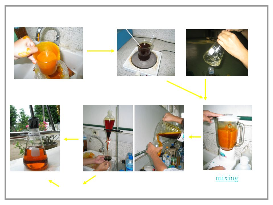 Biodiesel production (trans-esterification)