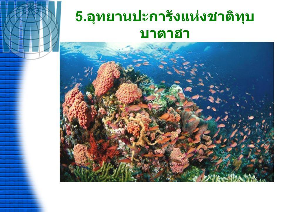 5.อุทยานปะการังแห่งชาติทุบบาตาฮา
