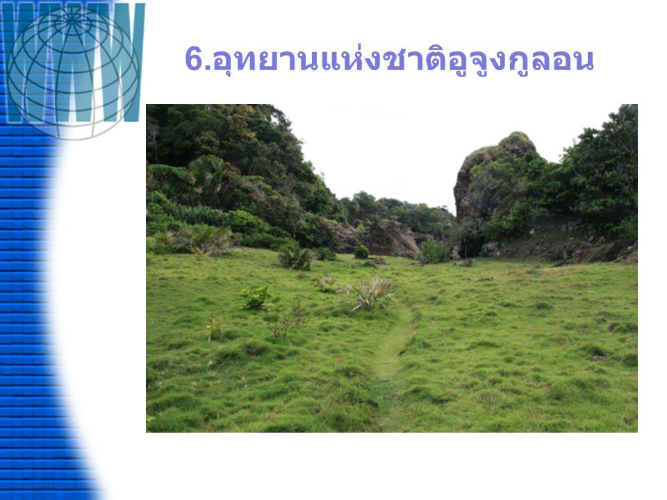 6.อุทยานแห่งชาติอูจูงกูลอน