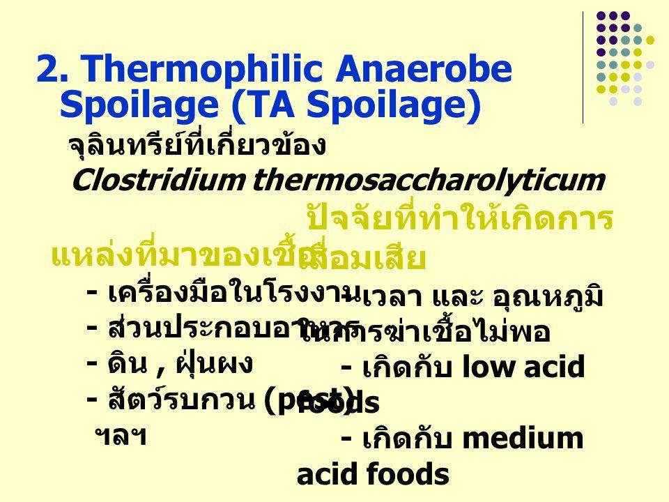 2. Thermophilic Anaerobe Spoilage (TA Spoilage)