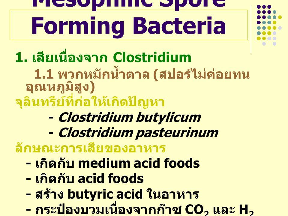 Mesophilic Spore Forming Bacteria