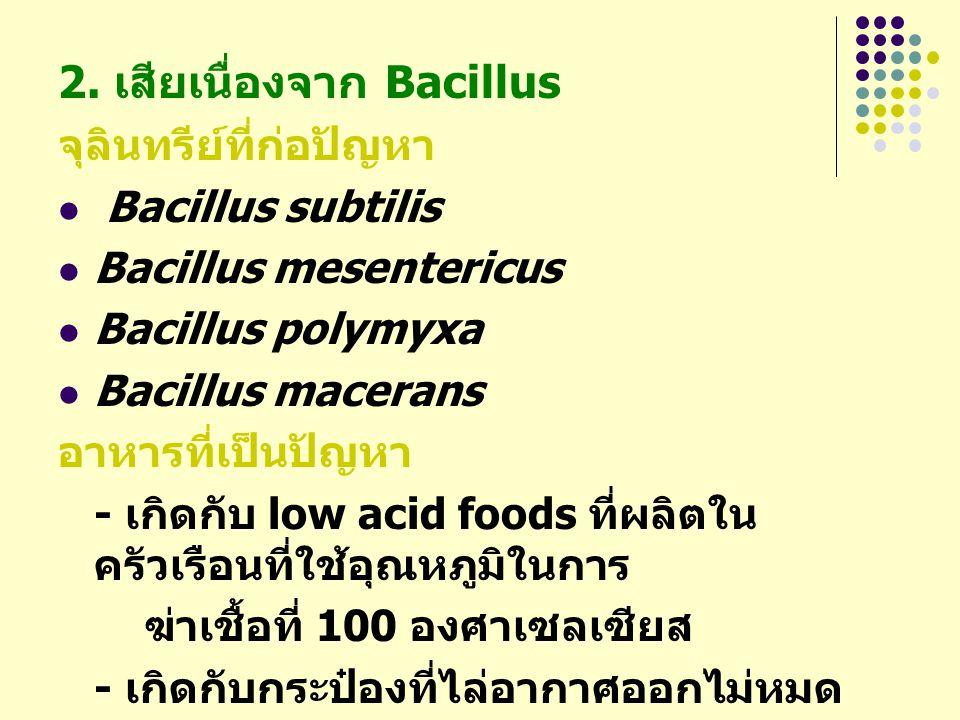 2. เสียเนื่องจาก Bacillus
