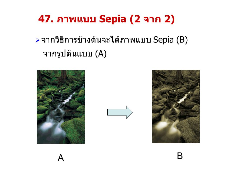 47. ภาพแบบ Sepia (2 จาก 2) B A จากวิธีการข้างต้นจะได้ภาพแบบ Sepia (B)
