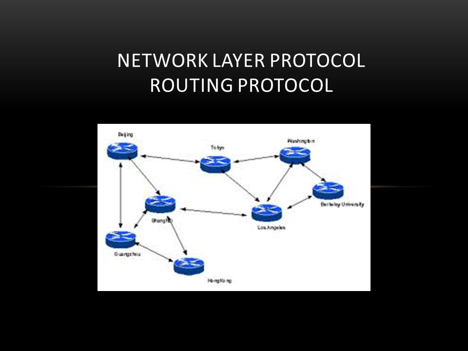 Network Layer Protocol Routing Protocol